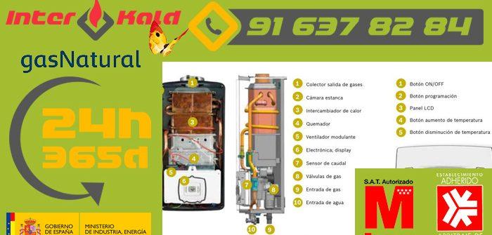 Calentadores estancos a gas para la producción de agua caliente