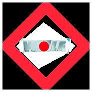 Servicio Técnico de calderas Wolf en Móstoles